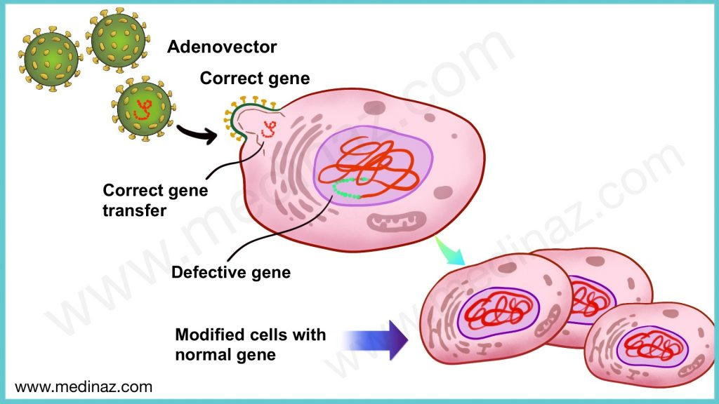 Zolgensma mechanism of action